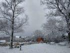 29 listopada spadł śnieg