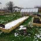 Ogród w śniegu