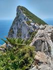 Gibraltar - Skała