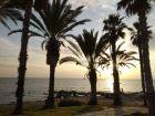 Na promenadzie w Pafos
