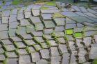 Terasy ryżowe