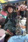 Targ w Paxe - żabki na sznurku