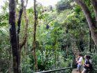 Ebony Park
