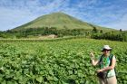 2014, Sulawesi, Ania, wulkan i pole dyni