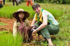2013, Birma, Ania sadzonki ryżu