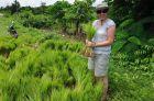 2013, Birma, Ania sadzi ryż