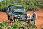 2011, Sri Lanka, park narodowy Bundala.
