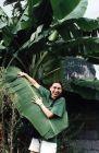 2002, Chiny, wielkie liście bananowca.