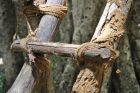 Drabina Weddów bez gwoździ