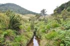 Park Horton Plains