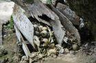 Trumny ze szczątkami