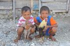 Dzieci z kogutami
