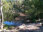 Rezerwat Judarskogen
